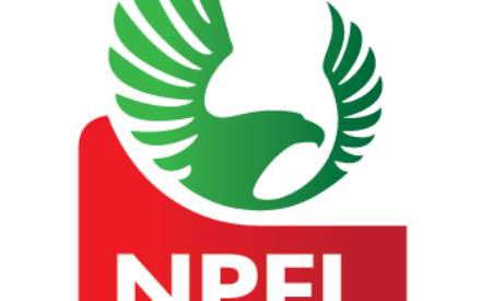 Eight Firms Wants Sponsorship Of NPFL