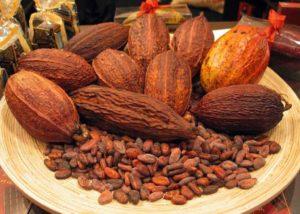 cocoa-gidibase