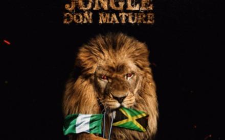 New Music : Drey Beatz ft. Timaya & Ce'cile – Jungle Don Mature
